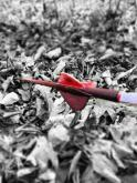 Bowhunter9790's Avatar