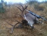Mex. Bowhunter's Avatar