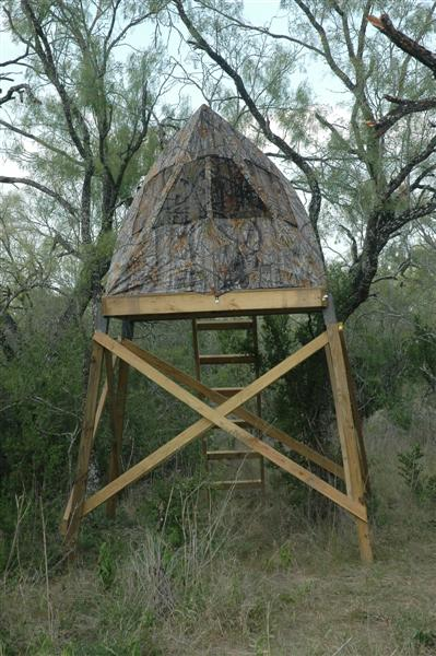Elevated Pop Up Blinds Texasbowhunter Com Community