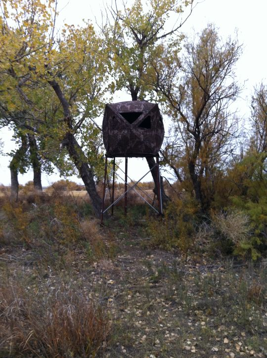Perfect Platform Height For Bow Blind Texasbowhunter Com