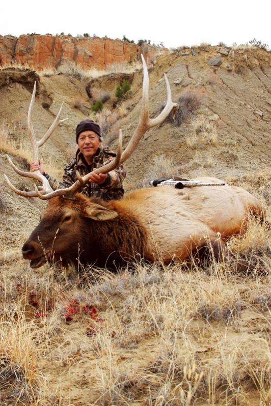 Where to hunt Elk? - TexasBowhunter com Community Discussion