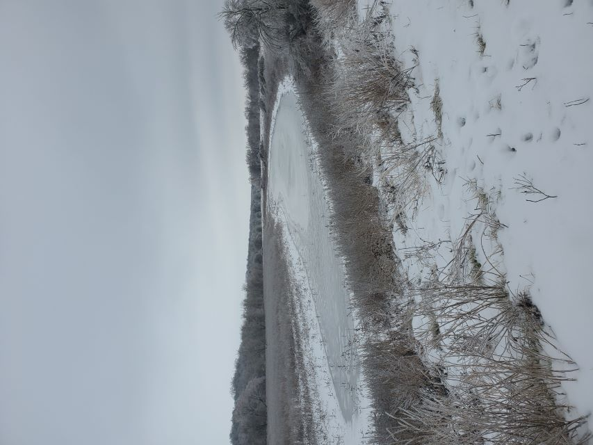 Name:  Horse shoe iced over.jpg Views: 569 Size:  78.4 KB