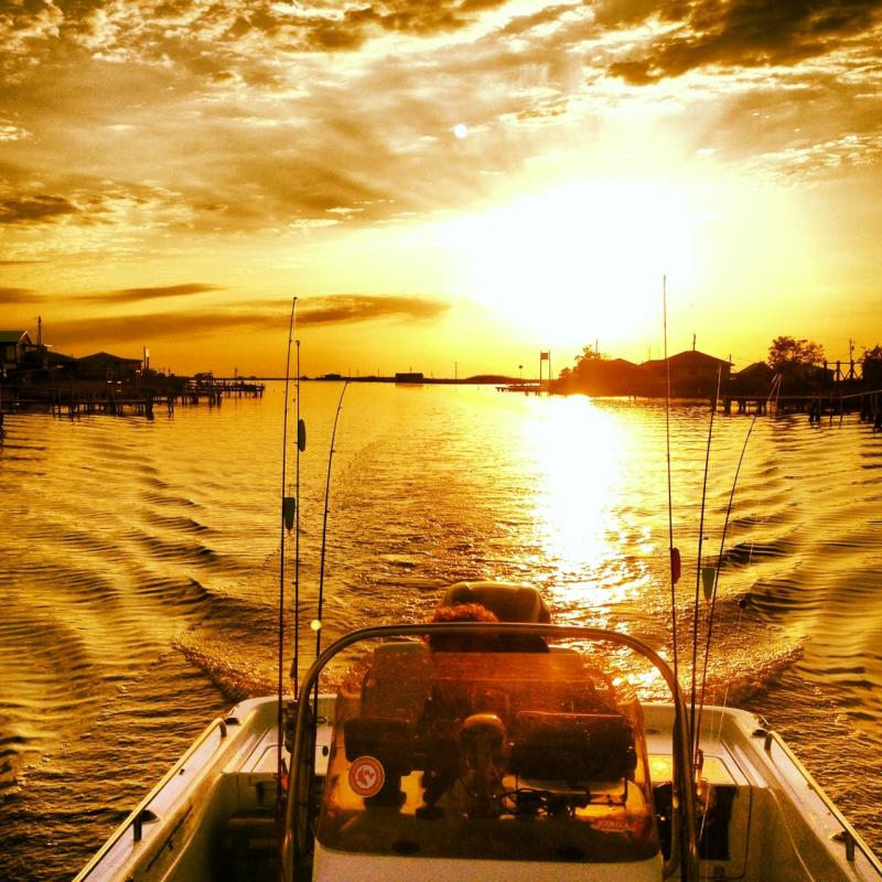 Name:  93 - Lanscapes The General.jpg Views: 3253 Size:  114.2 KB
