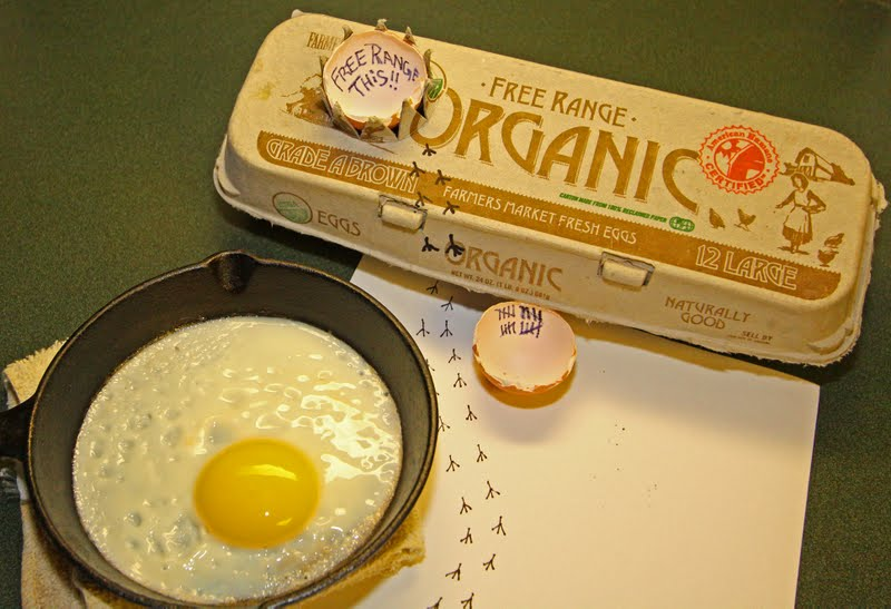 Name:  90 Breakfast Eggs Tuco.jpg