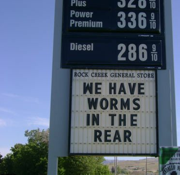 Name:  Worms in the rear.jpg Views: 1351 Size:  23.7 KB