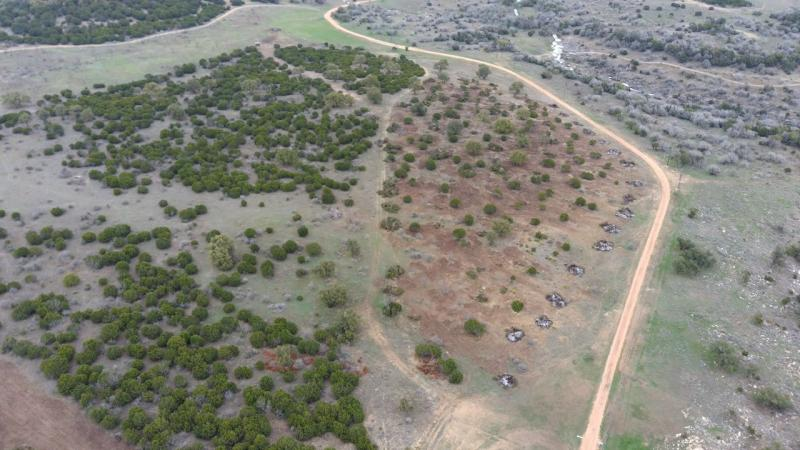 Name:  5 acre Clearing (3).jpg Views: 452 Size:  66.9 KB